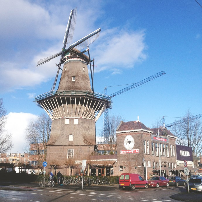 Yay Windmill!