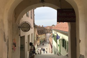 The Transylvania Diary